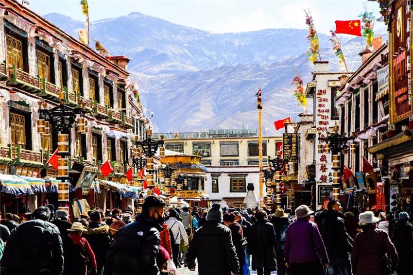 中国生物多样性现状_在西藏,一粒种子的无限可能_中国网