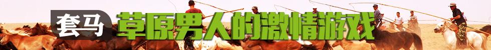 【原創】套馬:草原男人的激情遊戲(組圖)