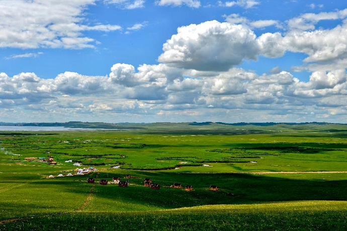 乌拉盖管理区筑牢绿色生态屏障