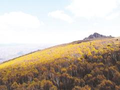 內蒙古大草原秋意濃