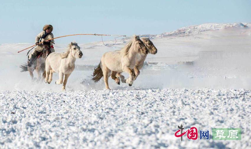 """馬背民族的彪悍熱情:""""穿越大漠蒼穹打馬相逢""""(攝影:張力軍)"""