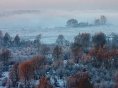 伊犁河之晨