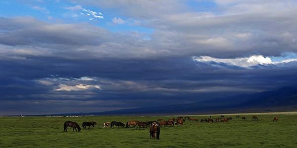 新疆哈密:望天空雲卷雲舒